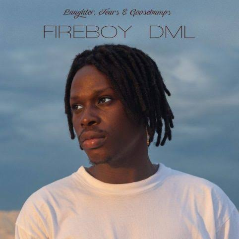 Fireboy DML Wait and See mP3 Download